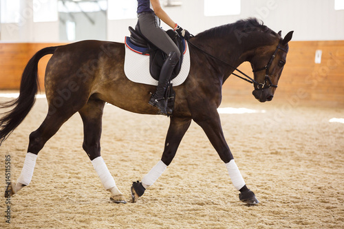 Young woman riding horse in arena, low section