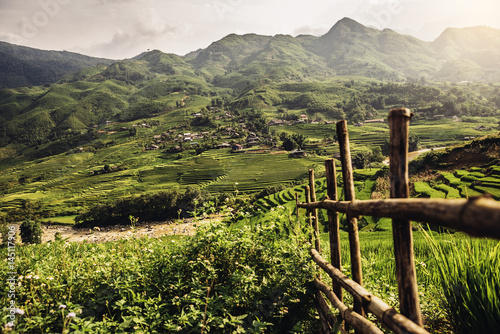 Tuinposter Asia land Landscape about terraced rice field in Sapa.