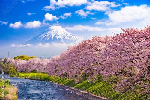Mt. Fuji in Spring in Japan.