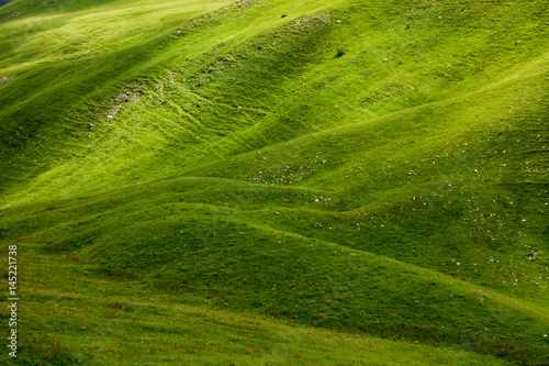Foto auf Gartenposter Hugel Hills in high mountains covered with fresh green grass;