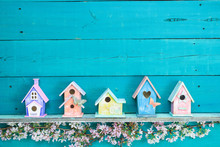 Row Of Colorful Birdhouses With Floral Border
