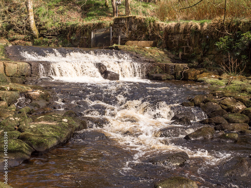 Fototapeten Forest river Waterfalls during sprintime at Hardcastle Crags, Hebden Bridge, Yorkshire, UK