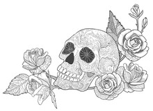 Skull With Rose Coloring Book Page For Adults Or Tattoo With Doodle Ornament.