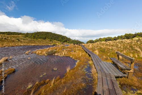 Poster Natuur Waitonga Falls Track bei Ohakune in Neuseeland Wanderweg mit Bank für Pause