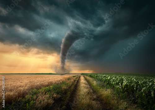 Tornado struck on agricultural fields at sunset Wallpaper Mural