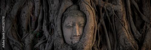 Buddha head Fototapete