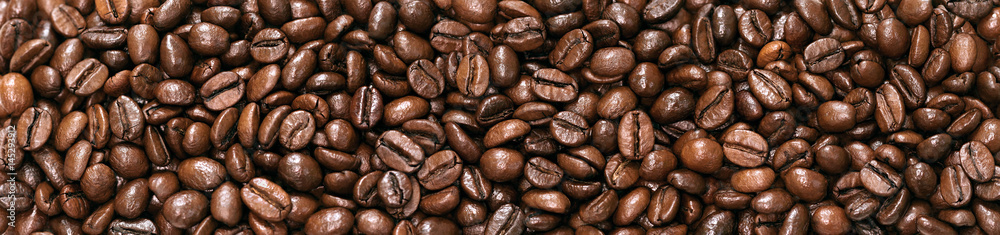 panorama  beans coffee isolated on a white background.