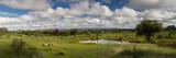 Fototapeta Sawanna - Panorama of a water hole in the namibia savanna