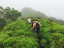 Hikers Ascend A Mountain Surrounded By The Lush Jungles Of Oahu, Hawaii.