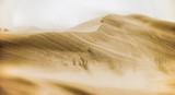 The sandstorm is coming - 145335963