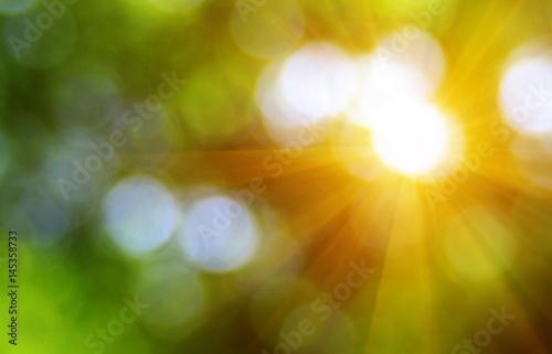 Fotografía  Green blurred background