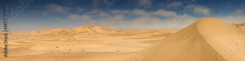 Foto op Canvas Zandwoestijn Panorama of yellow sand dunes