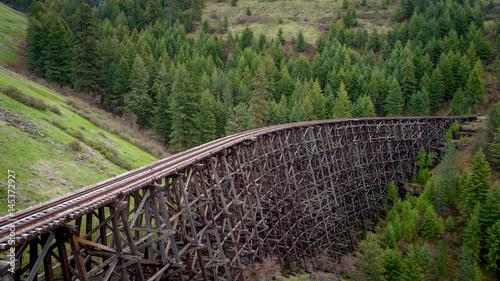 Fototapeta Unique view of a historic train trestle and forest