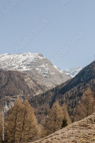 Photo  Zermatt, zum See, Blatten, Alm, Alpen, Zmutt, Juri, Wanderweg, Findelbach, Sunne