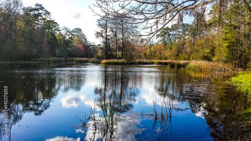 Fototapeta Alabama obraz na płótnie
