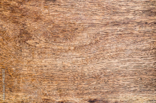 Poster Puma wood background texture