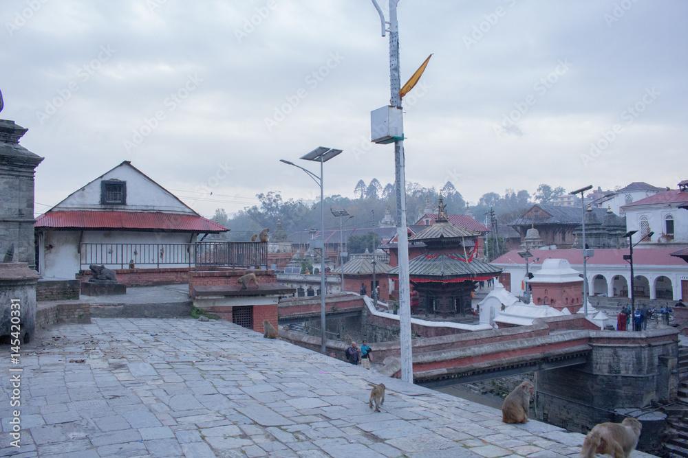 Pashupatinath Temple Nepal Plakat