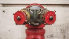 Siamese Fire Hydrant