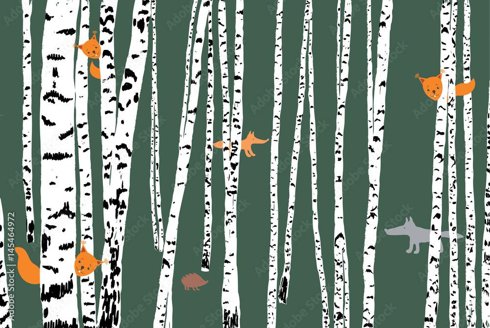 wild animals in a birch forest