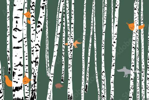 dzikie-zwierzeta-w-lesie-brzozowym