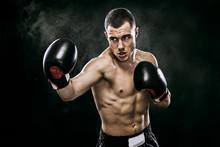Sportsman Muay Thai Boxer Figh...