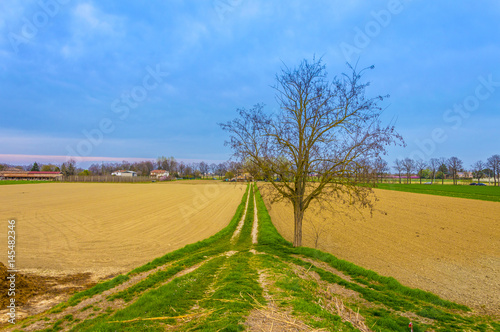 really-saturated-landscape-with