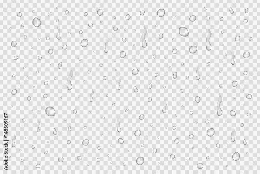 Fototapety, obrazy: Vector set of realistic water drops on the transparent background.