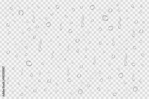 Fototapeta Vector set of realistic water drops on the transparent background