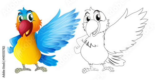 Poster Oiseaux, Abeilles Doodle animal for macaw parrot