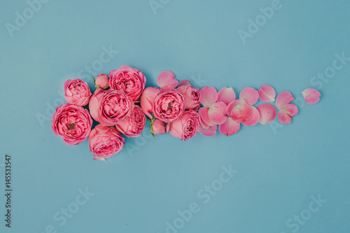 Pattern of pink roses on a blue background