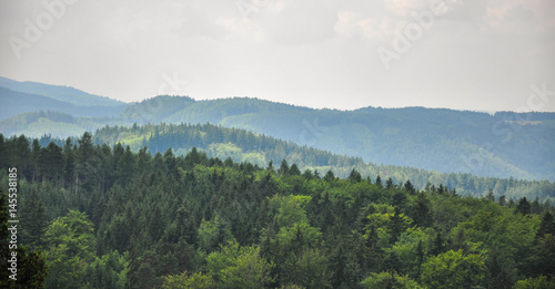 Fotografie, Obraz  Panoramic view of the forest in Karlovy Vary, Czech Republic