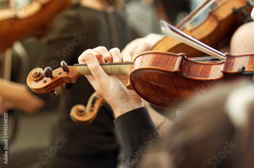 Fotografie, Obraz Member of classical music orchestra playing violin on a concert