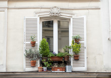 Window Frame Of House With Beautiful Flowers