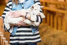 Young Woman Holding Cute Baby Goat Standing Indoors At The Barn