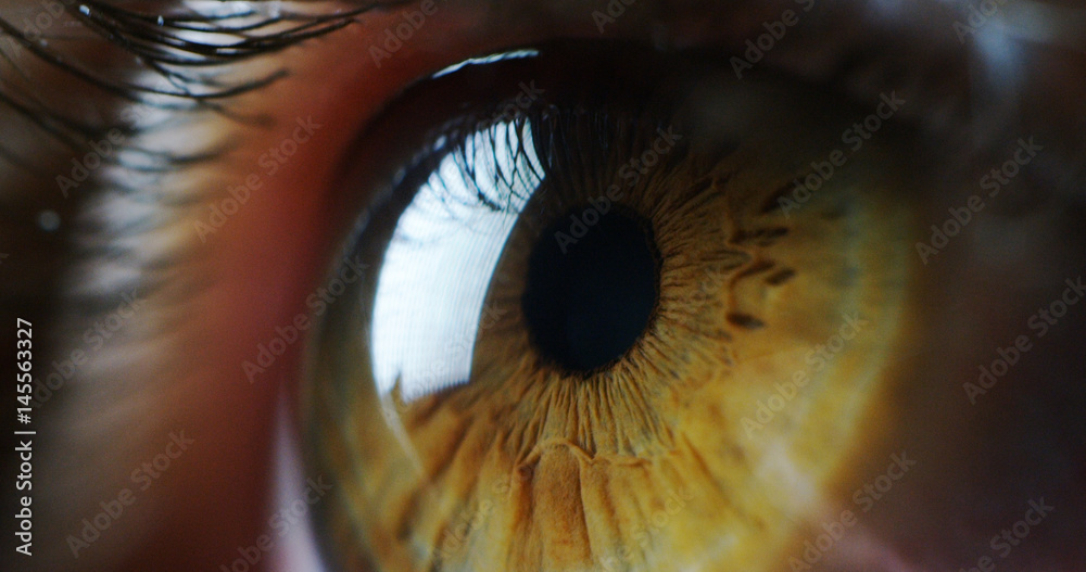 Fototapety, obrazy: perfect green eye macro in a sterile environment and perfect vision in resolution