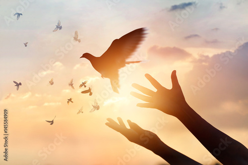 Poster Bird Woman praying and free the birds flying on sunset background, hope concept