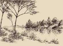 Hand Drawn Artistic Landscape. River Banks, Trees And Vegetation