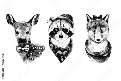 Dressed up hand drawn animals hipsters set.
