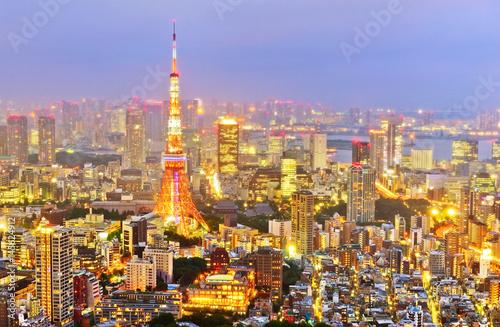 Obrazy na płótnie Canvas View of the Tokyo skyline at night