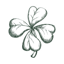 Clover Lucky Leaf Icon Vector Illustration Graphic Design
