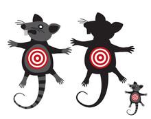 Rat Goal.