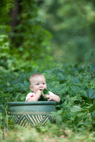 Photo  Little boy vegan eating a maple leaf sitting in a basket on a background of gree