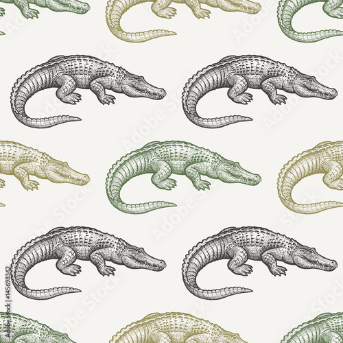 Tela Seamless pattern with Caiman.