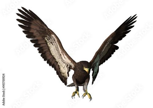 In de dag Eagle 3D Rendering Eagle on White