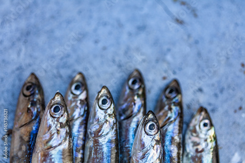 Photo Fresh fish anchovy background