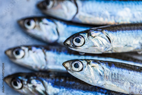 Fresh fish anchovy background Canvas Print