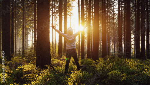 Fotografie, Obraz  Happy young man raised hands at sunset in the woods