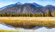 Flagstaff Arizona Mountains Reflected In Water