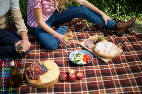 Türaufkleber Picknick Couple holding wineglasses while sitting on picnic blanket