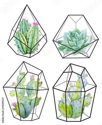 zestaw-akwarela-kaktus